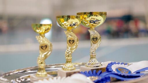 (AP Photo/from APTN Video). Awards stand on a tray ahead of the awarding ceremony of the 8th Hobby Horse championships in Seinajoki, Finland, on Saturday, June 15, 2019. More than 400 hobby horse enthusiasts took part in the show, competing on stylish ...