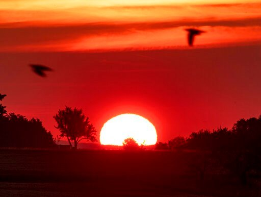 (AP Photo/Michael Probst). Birds fly by as the sun rises in Frankfurt, Germany, Monday, June 24, 2019. Germany expects hot temperatures during the next days.