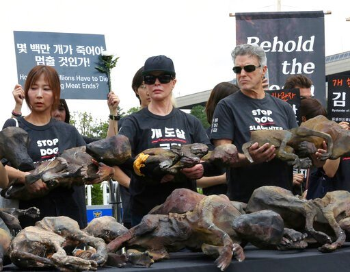 (AP Photo/Ahn Young-joon). American actress Kim Basinger, center, holds a model of a slaughtered dog during a rally to oppose eating dog meat in front of the National Assembly in Seoul, South Korea, Friday, July 12, 2019. July 12 is the day South Korea...