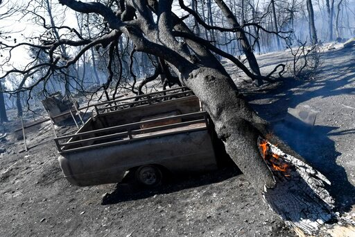 (AP Photo/Michael Varaklas). The trunk of a tree burns after a wildfire in Kontodespoti village on the Greek island of Evia, Wednesday, Aug. 14, 2019. More than a thousand firefighters battled wildfires Tuesday in Greece, with the largest burning out o...