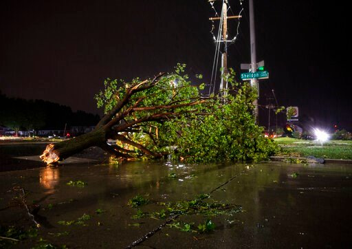 (Abigail Dollins/The Argus Leader via AP). In this Tuesday, Sept. 10, 2019 photo, trees and debris lay on a sidewalk following severe weather in Sioux Falls, S.D.