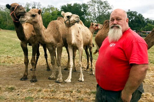 (AP Photo/Jeff Martin). In this Oct. 7, 2019 photo, Scott Allen, who runs Pettit Creek Farms in bone-dry Bartow County, Ga., poses for a photo. Allen says the small streams normally used to provide water for his camels, kangaroos, zebras and other anim...