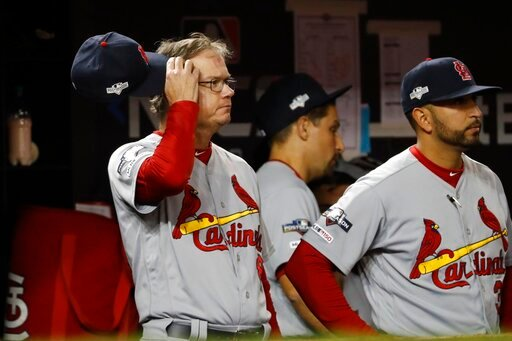(AP Photo/Jeff Roberson). St. Louis Cardinals manager Mike Shildt scratches his head during the eighth inning of Game 3 of the baseball National League Championship Series against the Washington Nationals Monday, Oct. 14, 2019, in Washington.