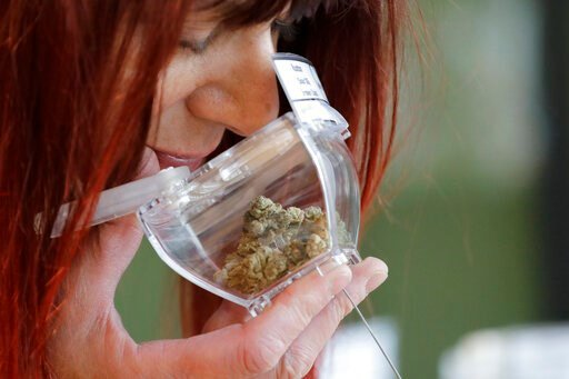 (AP Photo/Elaine Thompson). In this Wednesday, Oct. 9, 2019 photo, a customer sniffs a display sample of marijuana, in a tamper-proof container secured with a cable, sold at Evergreen Cannabis, a marijuana retail shop, in Vancouver, B.C. One year into ...