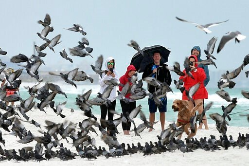 (Devon Ravine/Northwest Florida Daily News via AP). A group of people watch as a pigeons spooked by a dog take flight on the beach at Okaloosa Island near Fort Walton Beach, Fla., on Friday, Oct. 18, 2019. With Tropical Storm Nestor brewing in the Gulf...