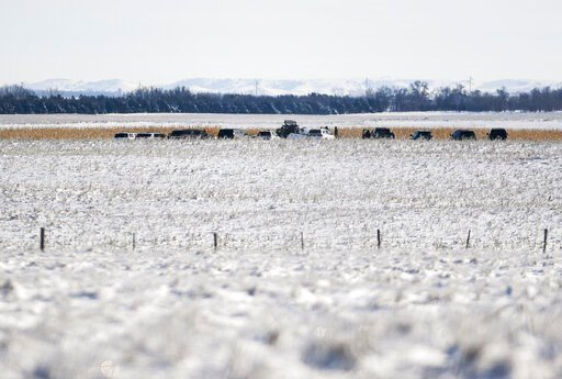 (Abigail Dollins/The Argus Leader via AP). Law enforcement surveys the scene of a plane crash on Monday, Dec. 2, 2019 in Chamberlain, S.D. Nine people were killed and three people were injured when a plane crashed shortly after taking off on Saturday, ...