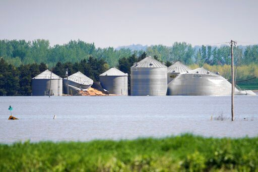 (AP Photo/Nati Harnik). In this May 10, 2019 photo, grain bins belonging to Brett Adams are surrounded by flood waters, in Peru, Neb. Adams had thousands of acres under water, about 80 percent of his land, this year. The water split open his grain bins...