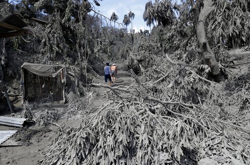 (AP Photo/Aaron Favila). In this Jan. 14, 2020, photo, residents walk at their volcanic ash covered village in Laurel, Batangas province, southern Philippines, as Taal volcano continues to spew ash. So far no one has been reported killed in the eruptio...