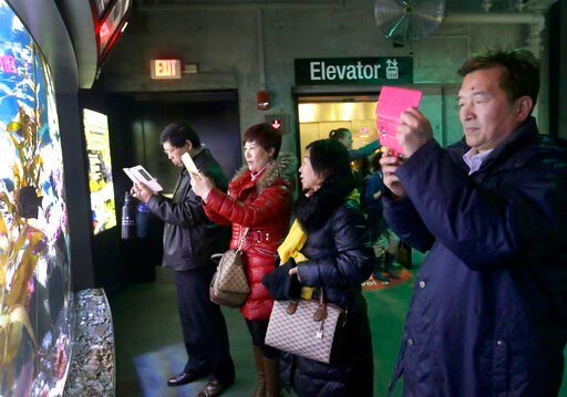 (AP Photo/Elise Amendola, File). In this March 27, 2017, file photo, tourists from China take pictures at the New England Aquarium in Boston. With tens of millions of Chinese ordered to stay put and many others opting to avoid travel as the new coronav...